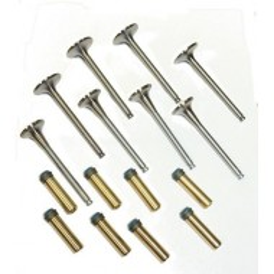 Kit guides bronze avec soupapes et joints-TR4*, TR4 AIRS